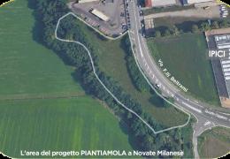 PIANTIAMOLA: gesti di cura per il pianeta e per le persone che lo abitano